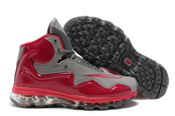 Nike Air Max Flyposite gray/Rouge Chaussures